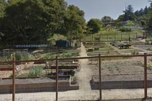 Aptos Community Garden