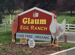Glaum Egg Ranch