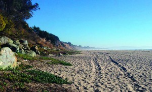 Beer Can Beach in Aptos
